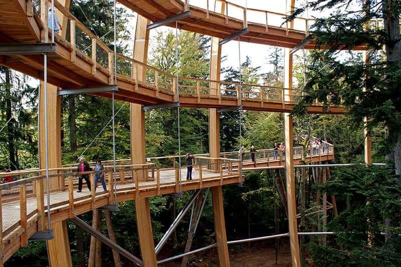 worlds longest tree top walk bavarian forest national park baumwipfelpfad 13