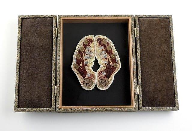 Anatomie met papier