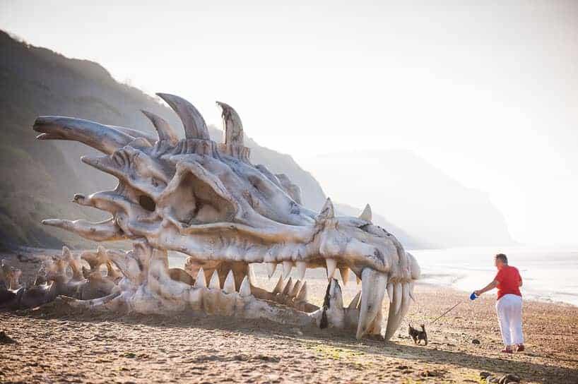 schedel van een draak