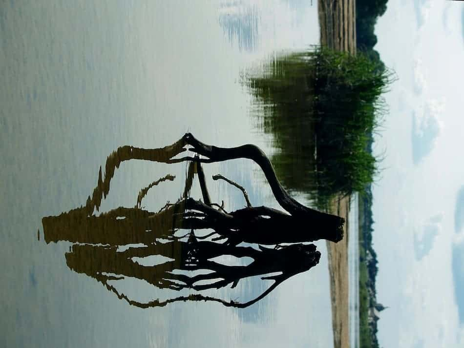 weerspiegeling