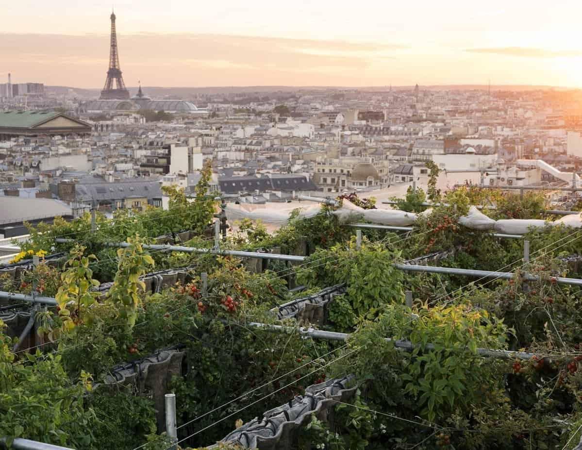 geheime tuin in Parijs