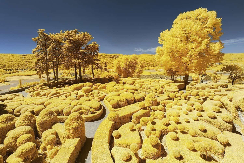 De Dordogne in het geel