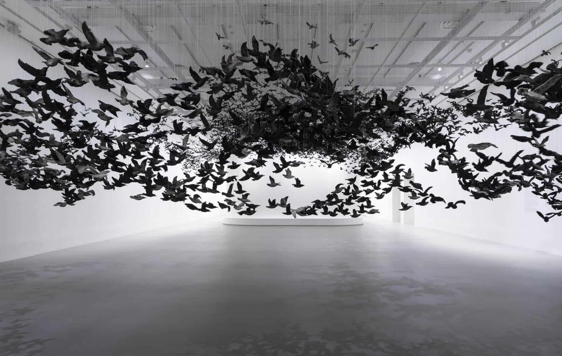 10.000 vogels
