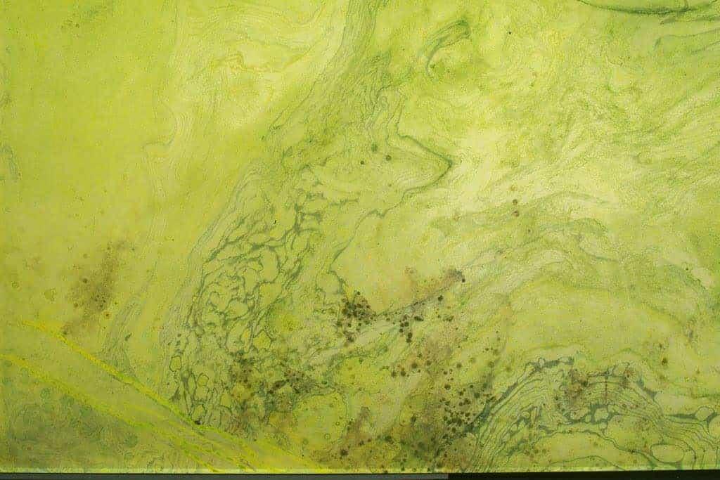Alma Heikkila toont een onzichtbare wereld