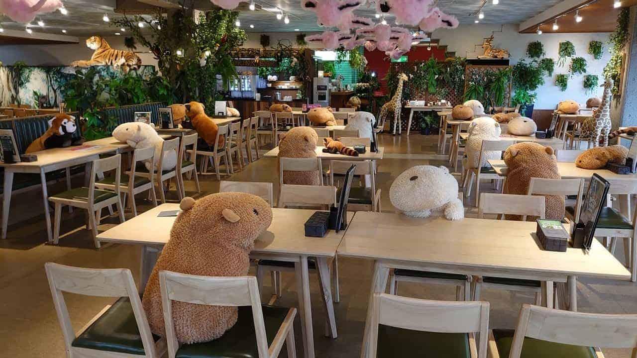 capibaras aan tafel