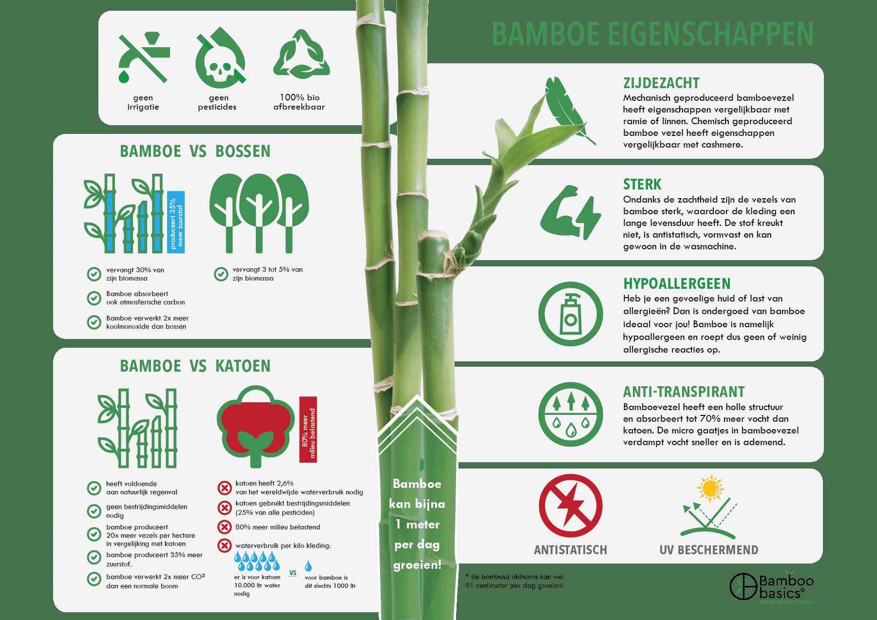 Bamboe infographic