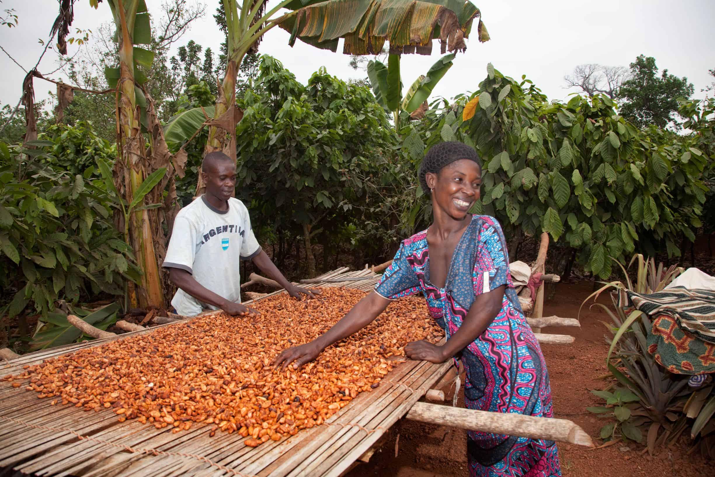 Solidaridad Cacao Meter 2020