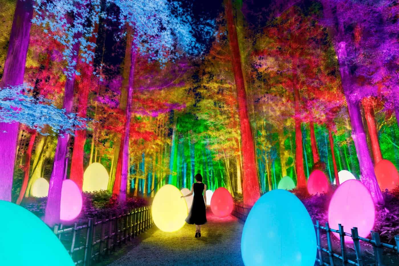 teamLab: Digitized Kairakuen Garden