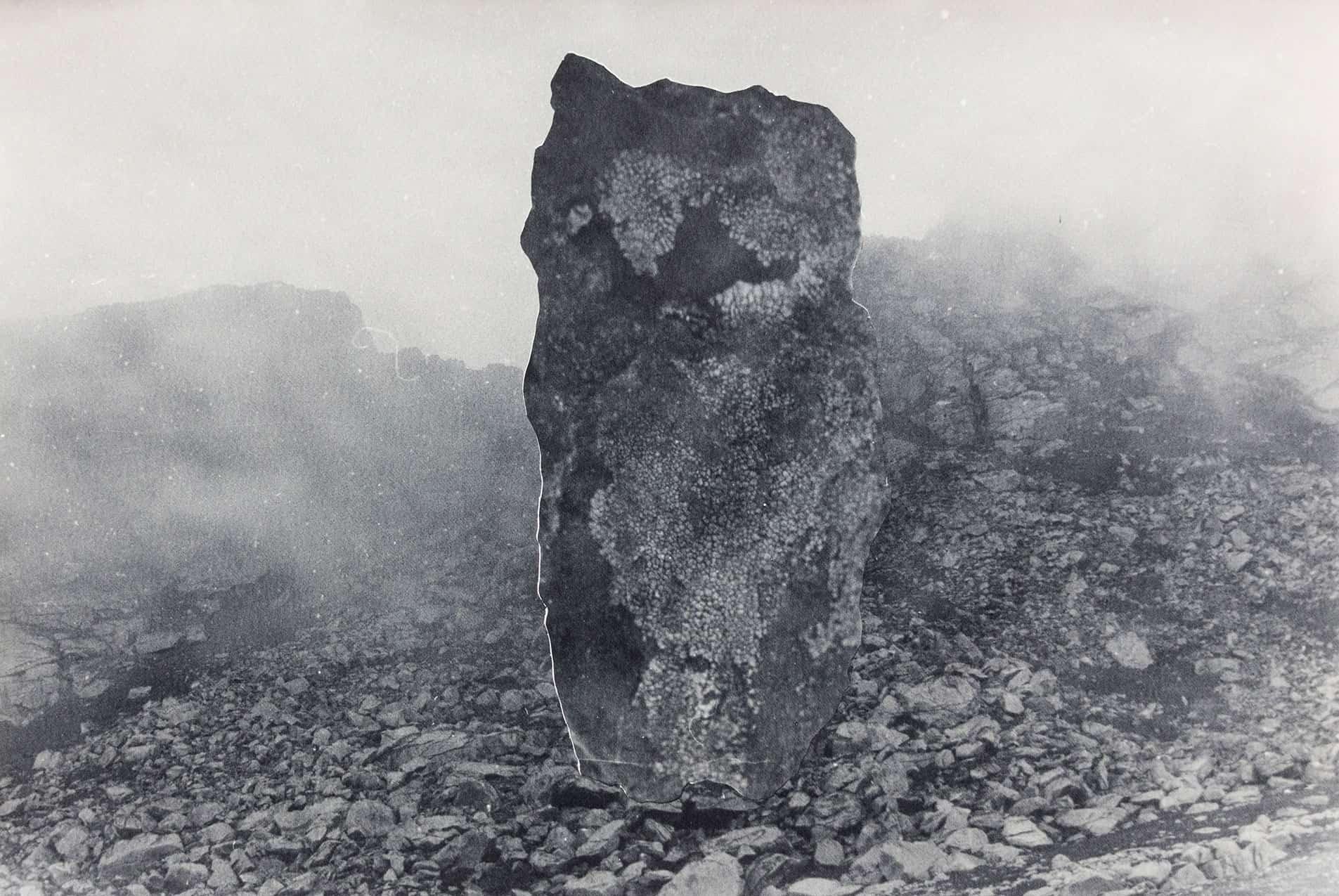 Contour Gallery - Paper Rock Scissors