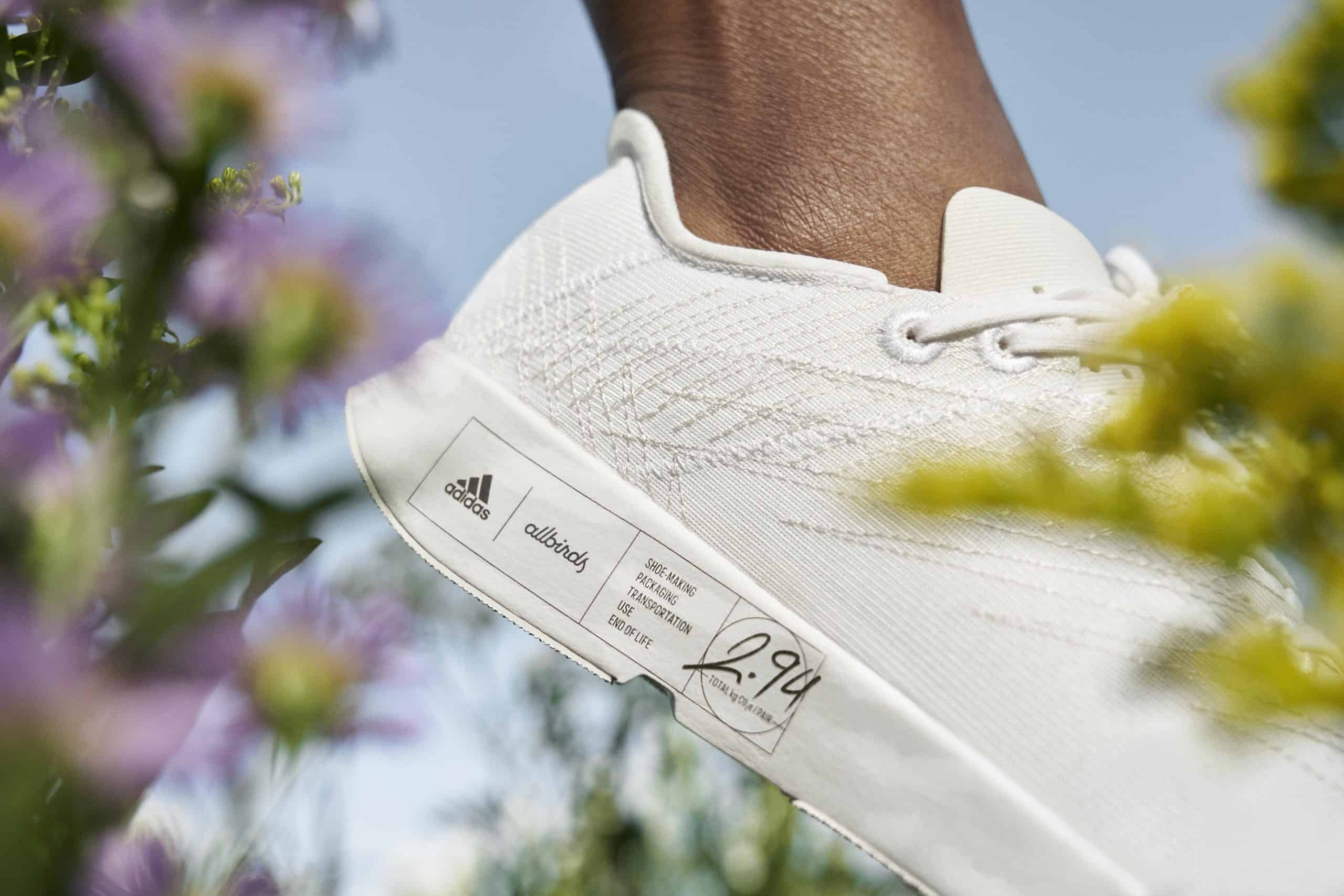 allbirds x adidas