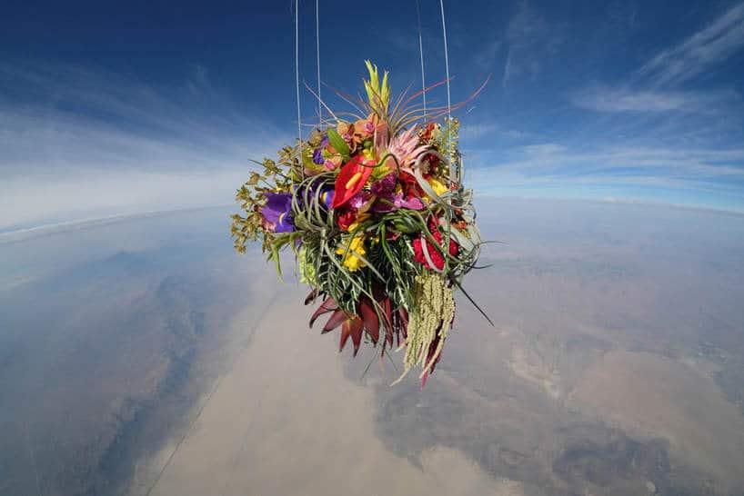 bloemen in de ruimte