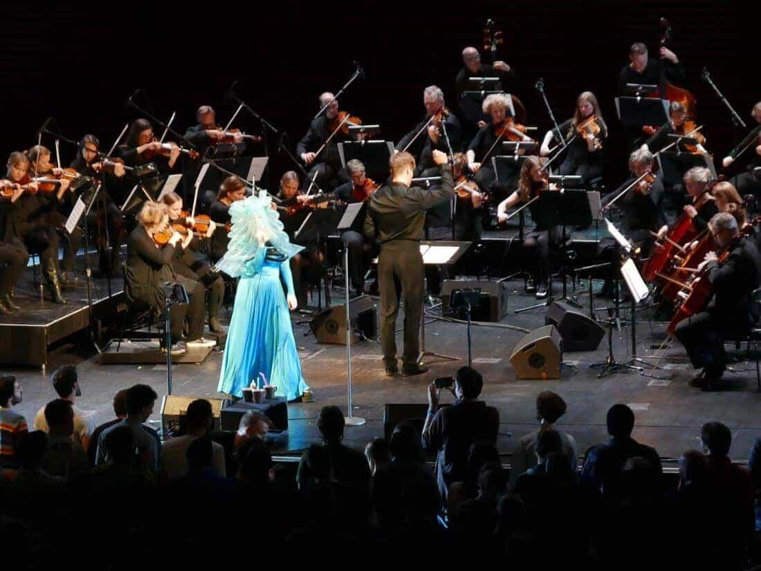 Björk Vulnicura Strings