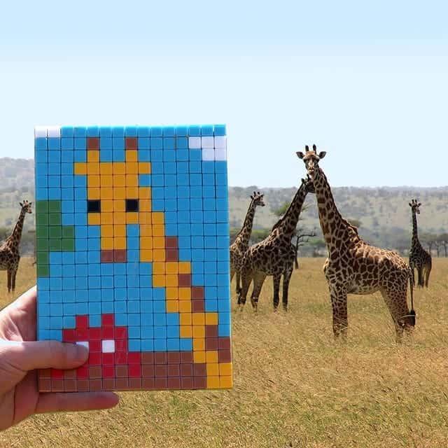 Invader brengt straatkunst naar de Serengeti in Tanzania