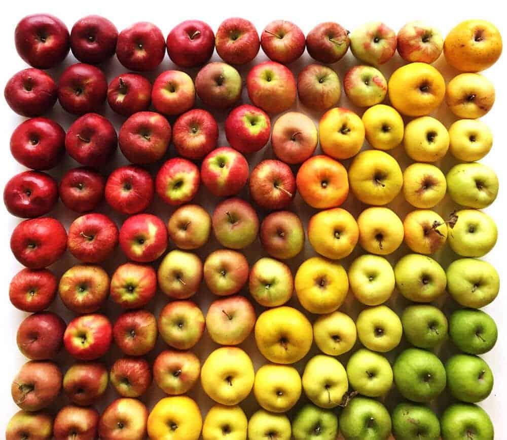 appels in alle kleuren