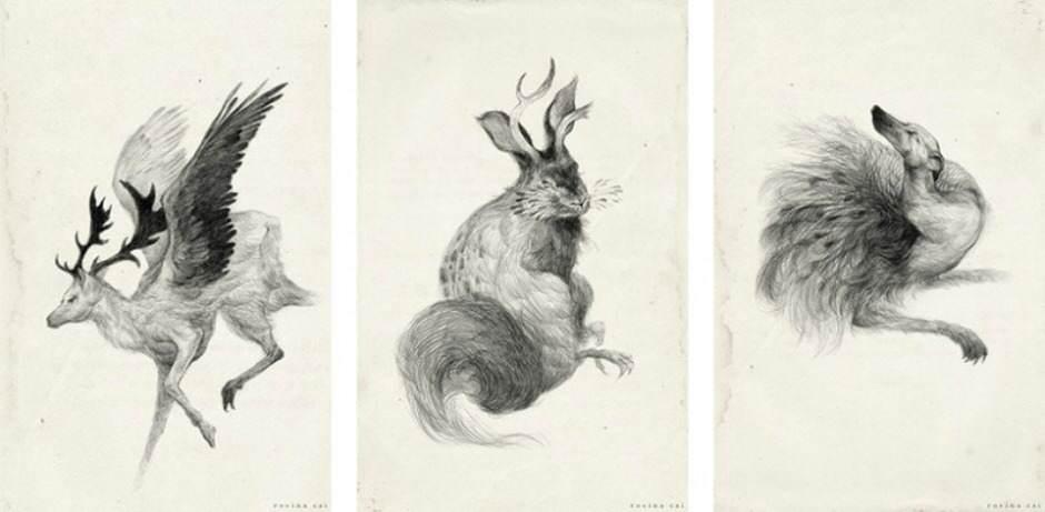 De mysterieuze wereld van illustrator Rovina Cai