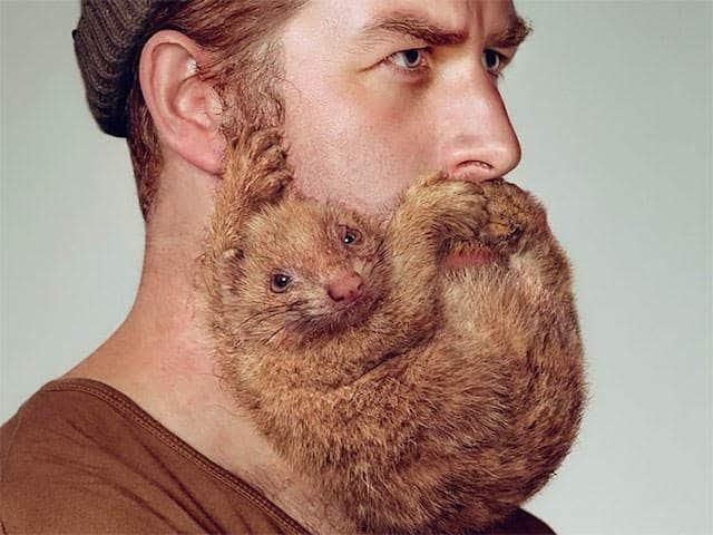beestachtige baard