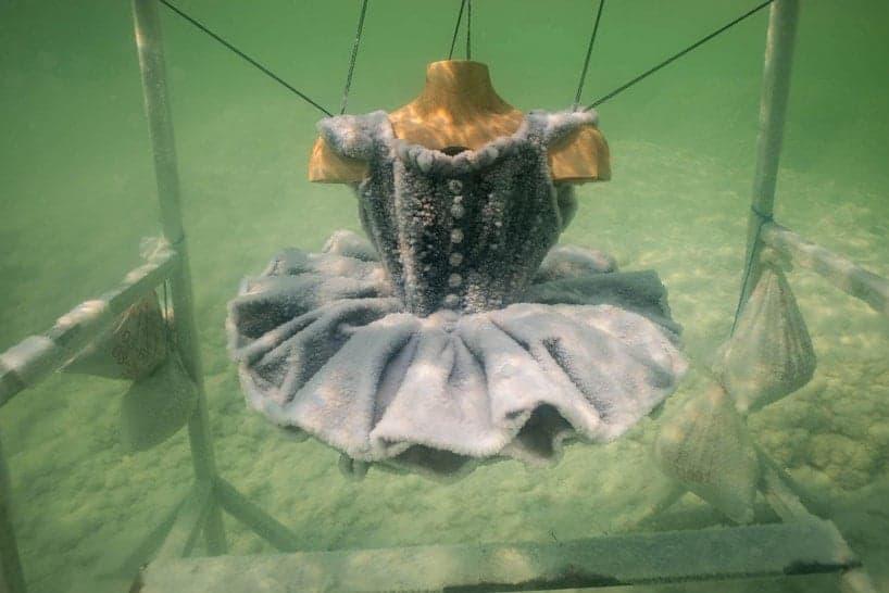 zoutsculptuur uit de Dode zee